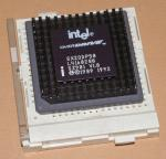 486-SX2ODP50sz901.jpg