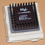 IntelDX4ODP100sz924.jpg