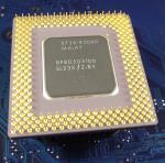 Intel_P1_BP80503166_SL23X_bot.jpg