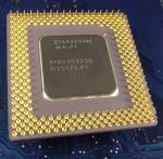 Intel_P1_BP80503200_SL2S9_bot.jpg
